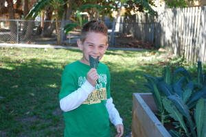 Integrating Gardening into the Classroom
