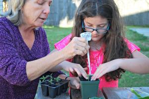 Elements in the Extraordinary Role of the Montessori Teacher