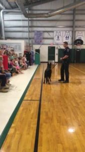 IHB Police Officer with his K-9 Kato!