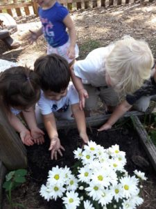 Our Toddlers having some joyful sensory work and creative play. Gardening and planting, hands in the soil!😊🤗