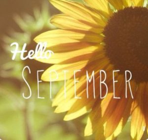 IHM wishes all of our families a wonderful Labor Day Weekend!🌻
