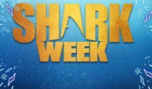 """The Indian Harbour Montessori Makos will be participating this week! 🎼""""BABY SHARK"""" doo doo doo, doo doo doo!🤩❤️🦈"""