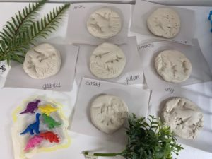 Room 7 Dinosaur fossils!🦕🦖
